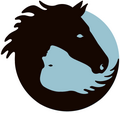 Frank&Vrij, Equine Assisted Coaching. Ontdek jouw kracht door de ogen van een paard.